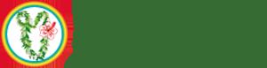 静岡県御殿場市・裾野市のハワイアンロミロミサロン|レイレア